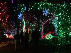 Denver Zoo Lights 2016. Photo by: Matthew McGuire