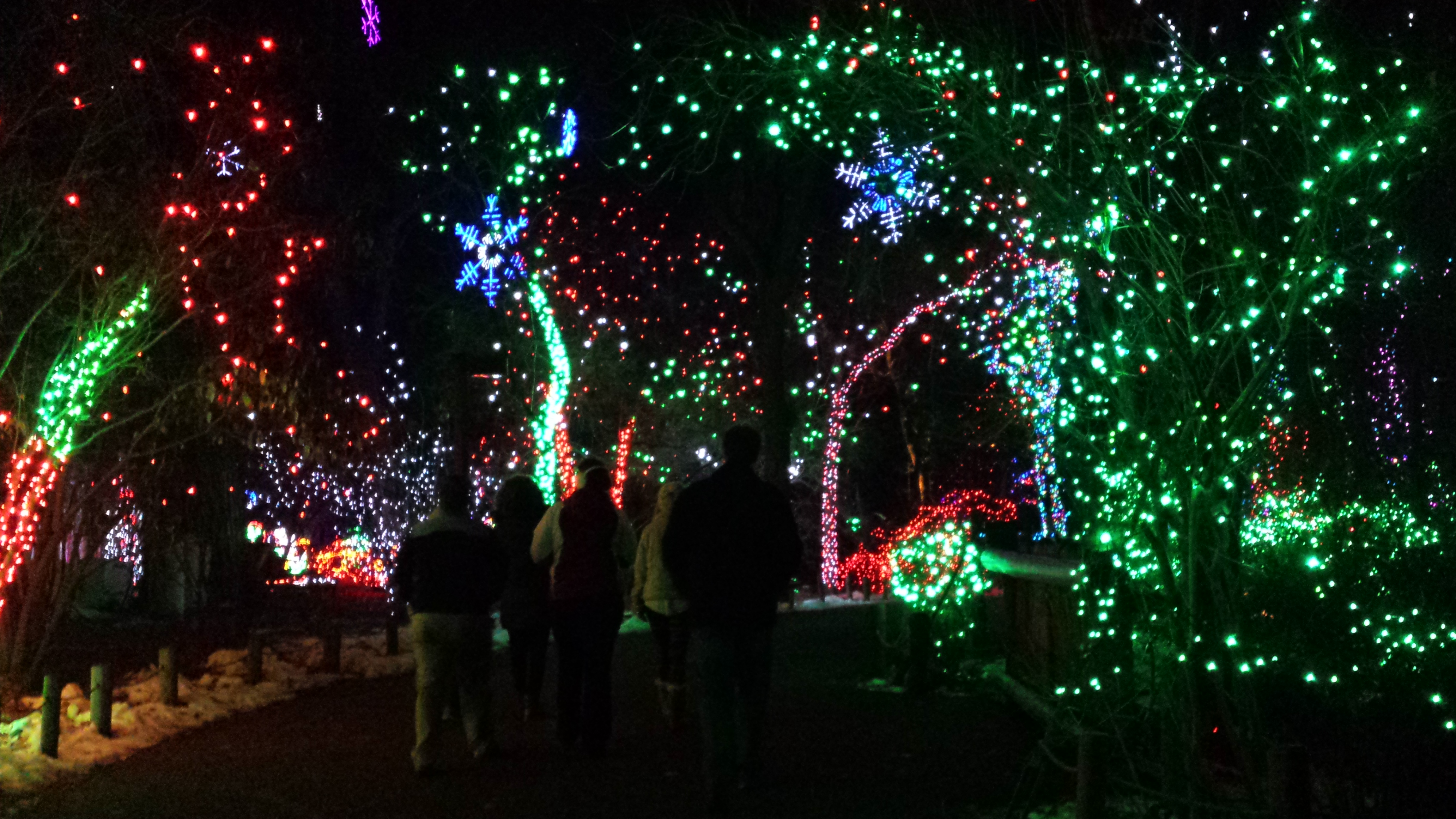 denver zoo lights connects with the washed ashore art exhibit - Best Christmas Lights Denver