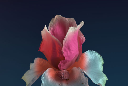 Flume album cover art for 'Skin: The Remixes.' Photo provided by: Sacks & Co.