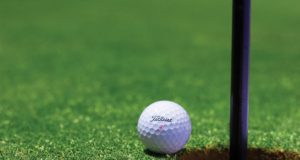 A golf ball next to the pin. Photo by: Tyler Hendy / Pexels.com