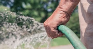 A farmer watering his crops. Photo by: Pexels.com