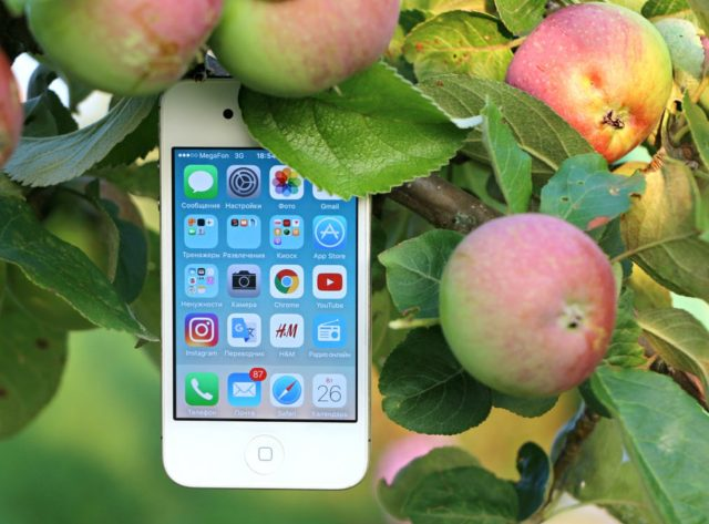 iPhone with apples. Photo by: Pexels.com