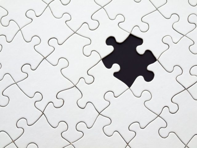 The missing puzzle piece behind success. Photo by: Pexels.com